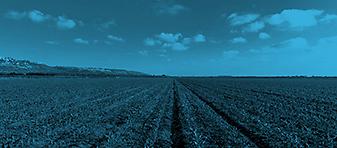 MARKET-Agriculture_BLUE